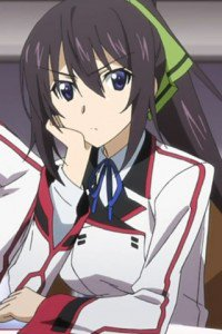Infinite Stratos.Houki Shinonono