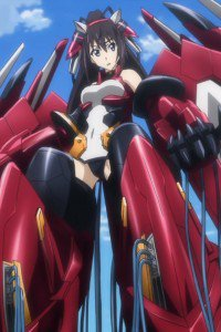 Infinite Stratos.Houki Shinonono.640x960
