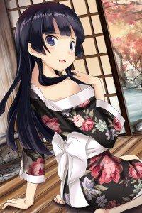 Ore no Imoto ga Konna ni Kawaii Wake ga Nai.Ruri Goko Kuroneko.640x960
