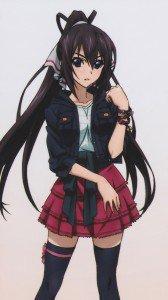 Infinite Stratos.Houki Shinonono Sony Xperia Z wallpaper.1080x1920