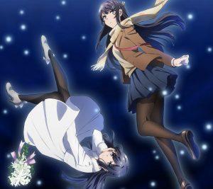 Seishun Buta Yarou wa Bunny Girl Senpai no Yume wo Minai Mai Sakurajima.Android wallpaper 2160x1920
